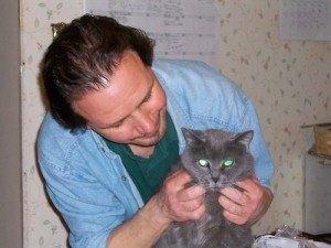 Enfermedades de gatos - gato con veterinario