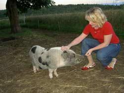 mujer con cerdo miniatura