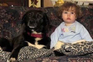 perro con niña